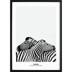 Zebra Hug Poster (29,7x42cm)