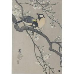 Blossom Poster Xl