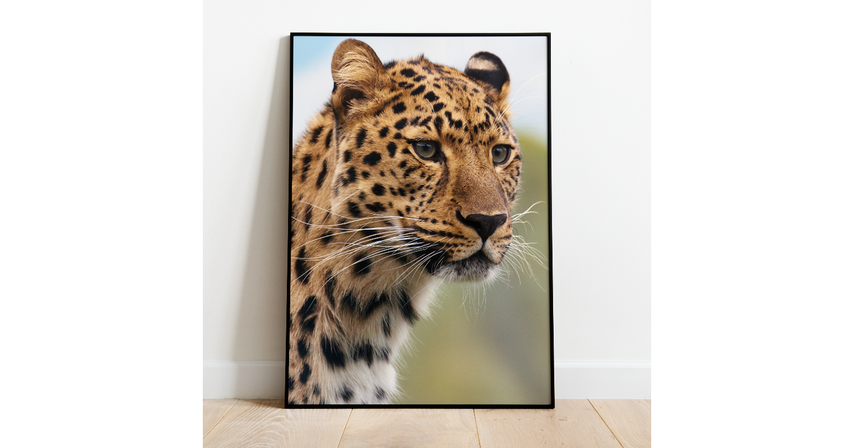 Poster luipaard - A3