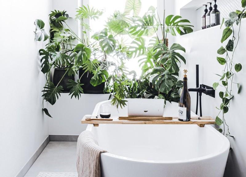 Inspiratie: planten in de badkamer