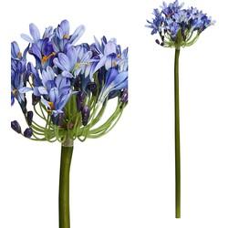 Garden Flower - 16.0 x 16.0 x 89.0 cm