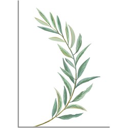 Eucalyptus blad poster - Wit - Puur Natuur Botanische poster - A4 poster (21x29,7cm)