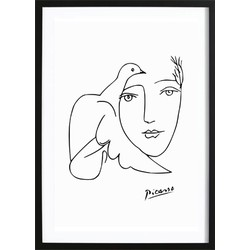 Picasso III (70x100cm)