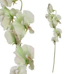 Garden Flower - 23.0 x 6.5 x 45.5 cm