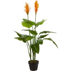 Mica Decorations strelitzia in plastic pot oranje maat in cm: 110 x 60