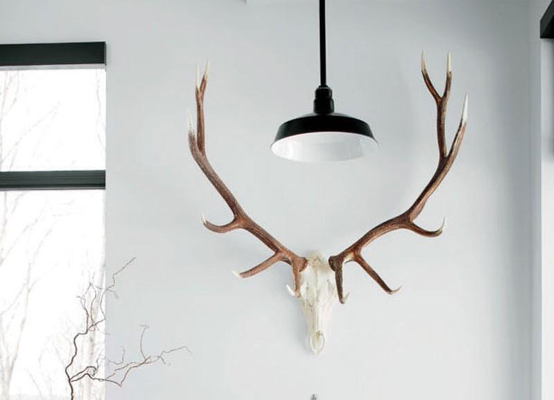 Into the wild: de dieren zijn terug in het interieur!