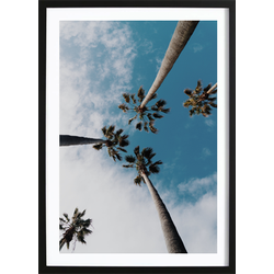 Palms In The Sky Poster (21x29,7cm)
