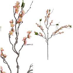 Blossom Flower - 56.0 x 37.0 x 115.0 cm
