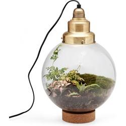 tafellamp edison's garden 35 x ø25 (alleen afhalen)