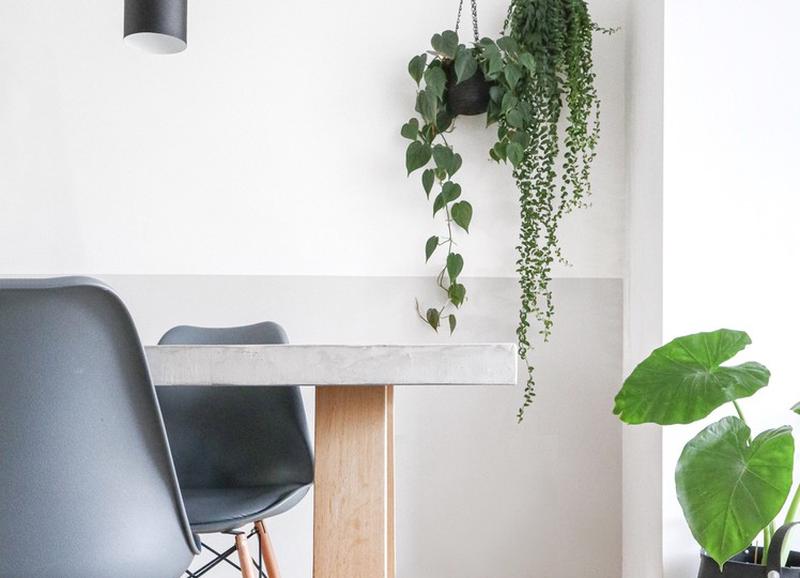 20x de mooiste hangpotten en -planten