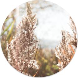 Muurcirkel klein grass - Ø 30 cm