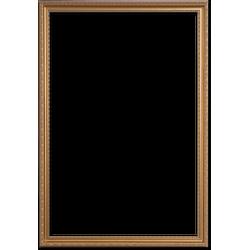 Klassieke Fotolijst 20x25 cm Goud - Olivia