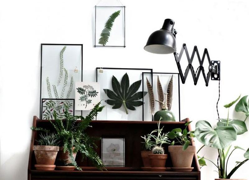 DIY: gedroogde planten in transparante lijstjes