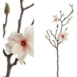 Magnolia Flower - 35.0 x 18.0 x 72.0 cm
