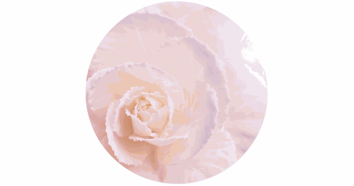 Label2X Muurcirkel soft flower pastel Ø 100 cm / Dibond - Aanbevolen - Ø 100 cm