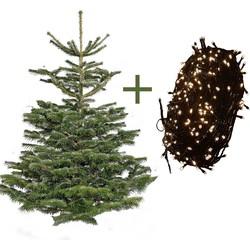Nordmann Kerstboom 270 met verlichting - Plant&More