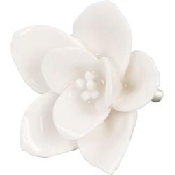 Clayre & Eef - deurknop Ø 5.5 cm - creme - keramiek - bloem - 61916