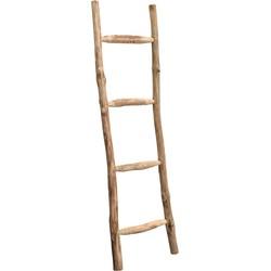 ladder brix larry 180 x 50 x 4