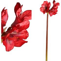 Garden Flower - 20.0 x 20.0 x 83.0 cm