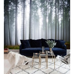 Vliesbehang XL Hoge bomen 300x250 cm