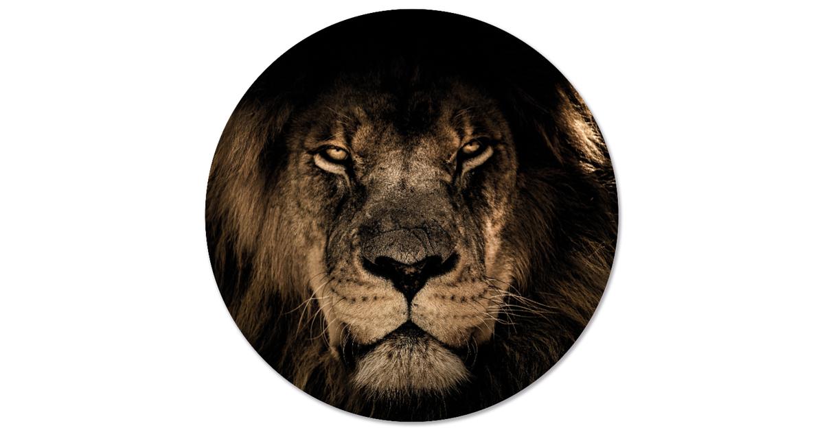 Muurcirkel klein leeuw - Ø 20 cm