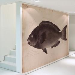 Kawahara Keiga's zwarte vis - 200x260 cm (BxH)