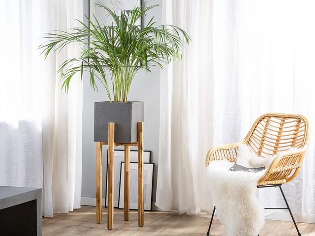 24x leuke plantenstandaarden die je nu direct kunt shoppen