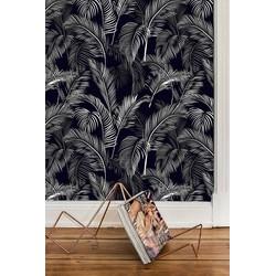 Zelfklevend behang Palmblad zwart wit  122x122 cm