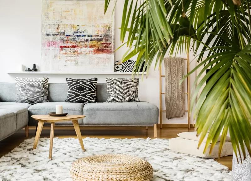 Zo moet jij je palm kamerplant verzorgen