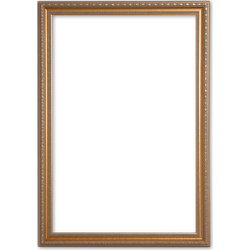 Klassieke Lijst 60x70 cm Goud - Sia