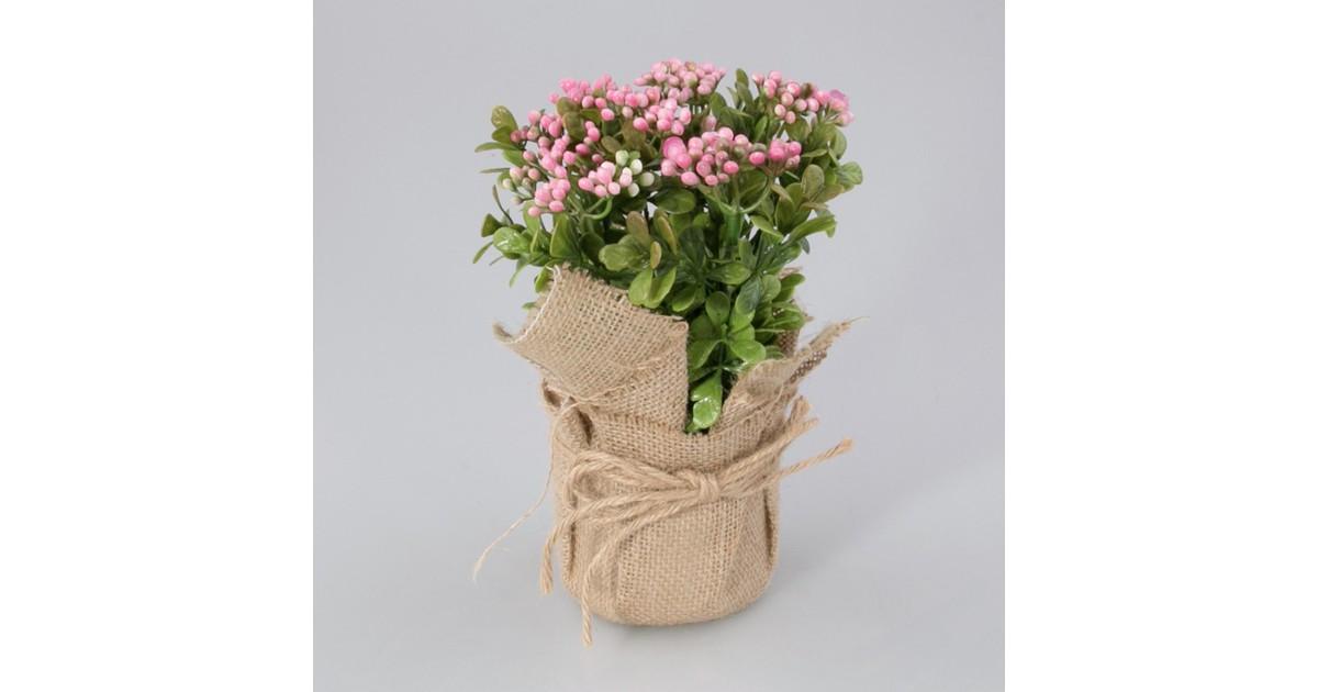 Plantje in jute zak Fleur roze