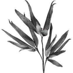 Cozy Ibiza - Foamtak cactus zwart 115 cm
