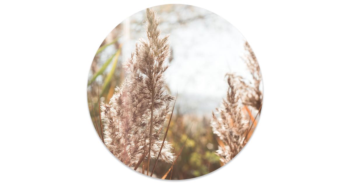 Muurcirkel klein grass - Ø 20 cm