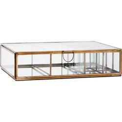 box 10 vakken glas brass 7,5 x 28 x 20,5