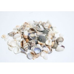 Schelpen mix naturel - 2.000 gram