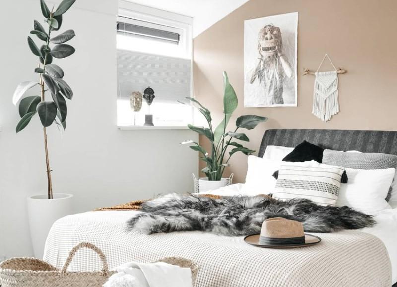 Zo help je je kamerplanten de zomer door