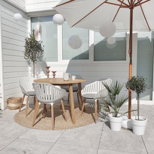 Shoppen: de leukste boompjes voor op je balkon of terras met bijpassende potten