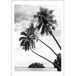 Palmtrees (29,7x42cm)