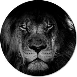 Muurcirkel leeuw bw - Ø 40 cm