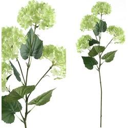 Hydrangea Flower - 33.0 x 15.5 x 68.5 cm