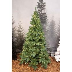 Triumph Tree 215 x 135cm  groen met led lampjes 700 warmwitte kunstkerstboom Northshore