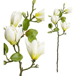 Magnolia Flower - 23.0 x 15.5 x 66.0 cm