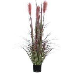 Mica Decorations foxtail in plastic pot bordeaux maat in cm: 120 x 45