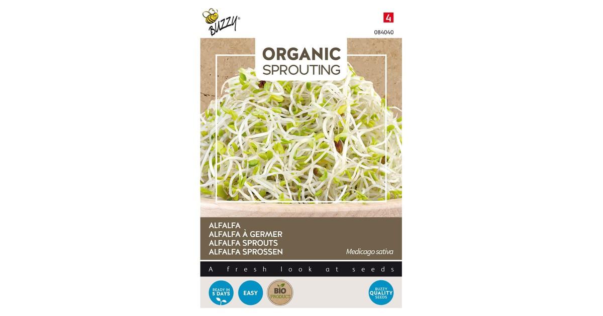 3 stuks Bio knip en eet alfalfa