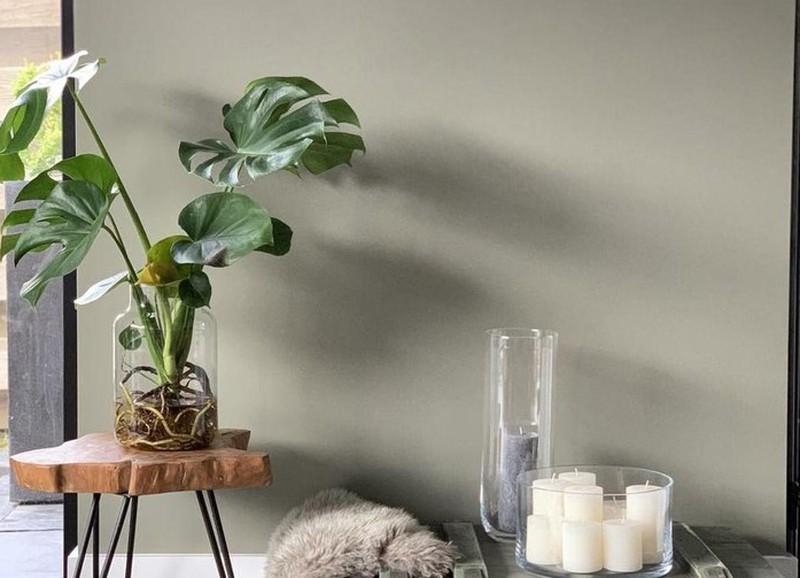 DIY: hydroponie, planten op water