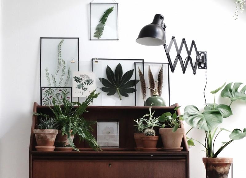 DIY: Gepresste Blumen und Blätter im Bilderrahmen
