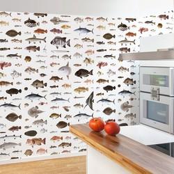 Vissen van Kawahara Keiga - per rol