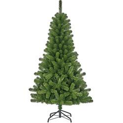 Black Box Franse 120 x 71cm groen kunstkerstboom charlton