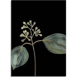Zaadjes blad poster - Zwart - Puur Natuur Botanische poster - A4 poster (21x29,7cm)