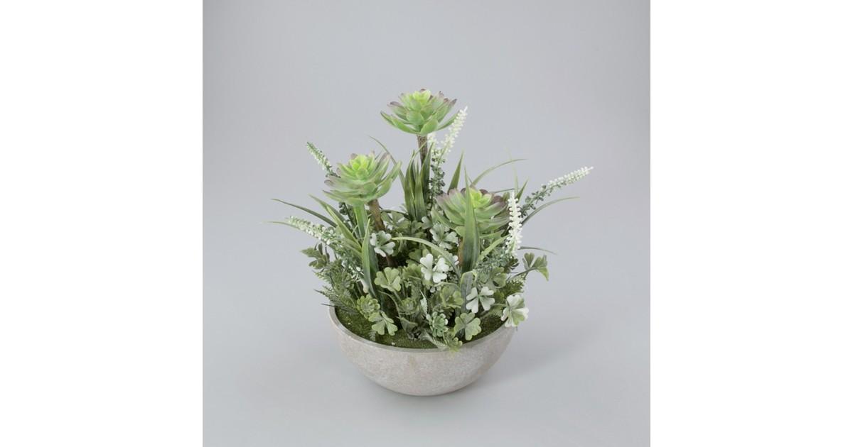 Plantje in keramiek schaal Lotus wit